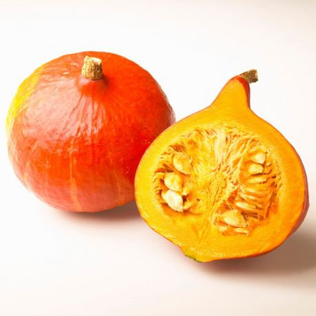 Potimarron orange nouveau