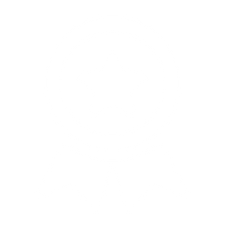 Success Icon WHite.png