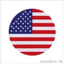 CP World Flag Coaster America 027901