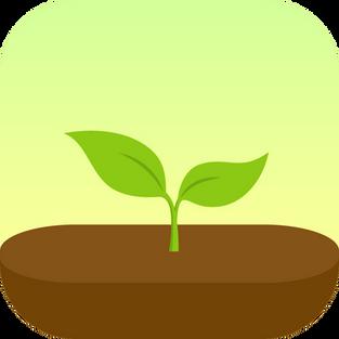 App tip: Forest