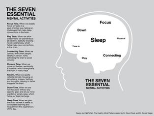 De schijf van 7 voor een fit brein