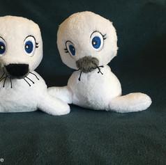 Duo de phoques