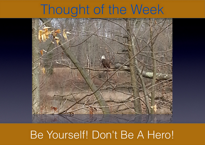 Thought of the Week - 02/2013