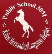 PS 30M Logo.png