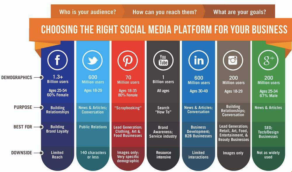 Social Media Platform Selection Tool