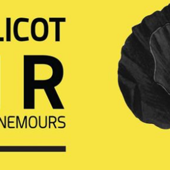 Le Coquelicot Noir - Salon du livre de Nemours