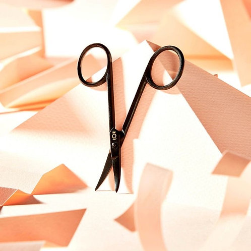 EyeBrowQueen Precision Scissors