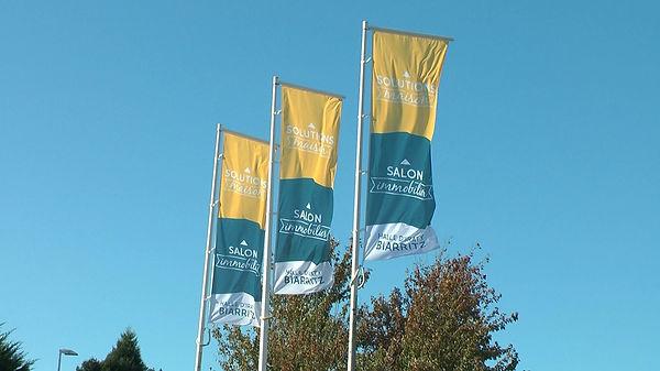 drapeau SM ciel bleu.JPG