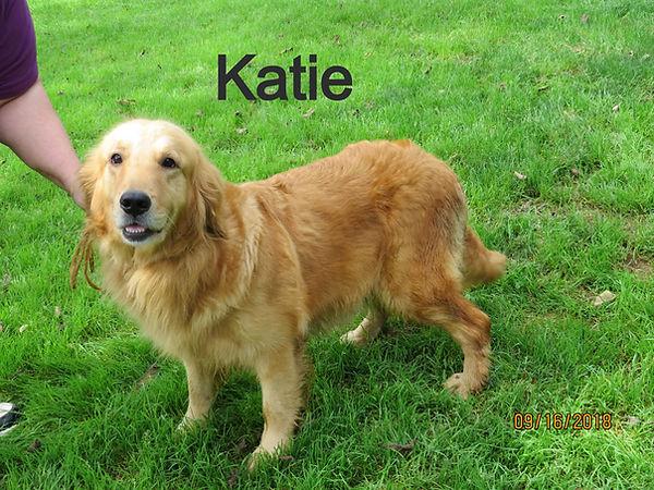 Katie%20MVK_edited.jpg