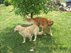 Sophie & Lucas 6-21-13.jpg