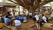 Togo Photo Tree.jpg