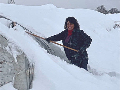 Digging Out the Greenhouse