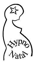 logo HN Noir.jpg