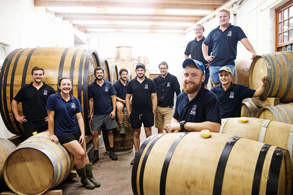 Tomorrow's Winemakers