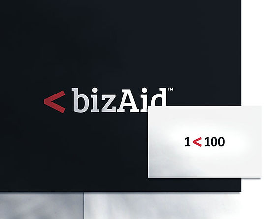 PrincipalbizAid.jpg
