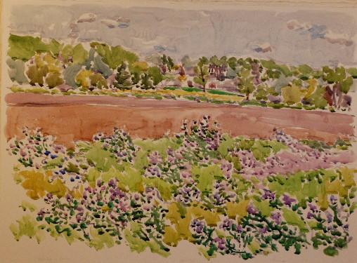 Alfalfa and Farm