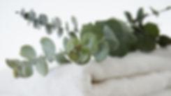 eucalyptus shower.jpg