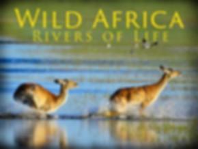 wild-africa-rivers-of-life.jpg