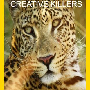 AFRICA'S CREATIVE KILLERS (2016)