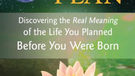 Your Souls Plan: Discovering the Real Meaning of the Life You Planned Before You