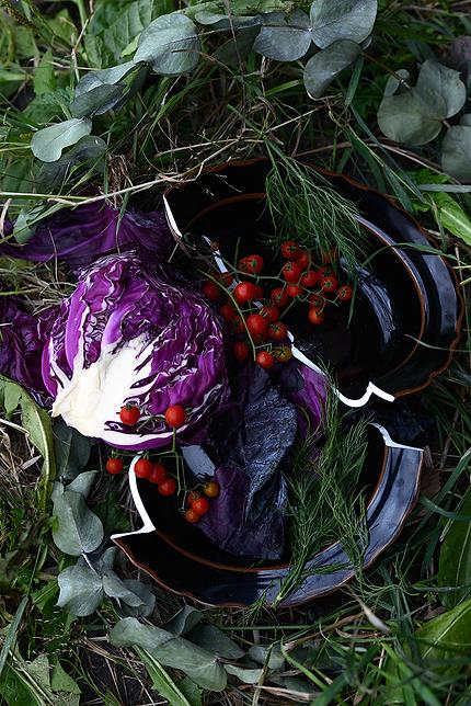 food, photographer, Japan, cook, cuisine, dish, recipe, eat, shooting, Junichi Miyazaki