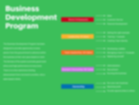 Business Development Program (1).png