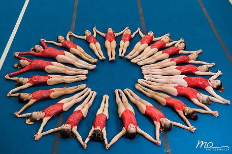 Lion's Pride Gymnastics Competitive Team in Victoria BC