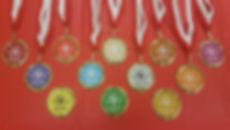 Lion's Pride Gymnastics Medals