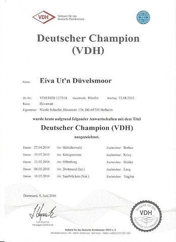 VDH Champion.jpg