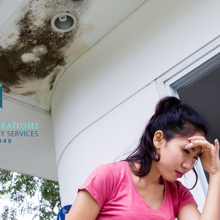 Mold & Microbial Growth Best Practices for Multi-Unit Building Property Managers & Owners
