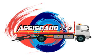 assiscard logo web.png