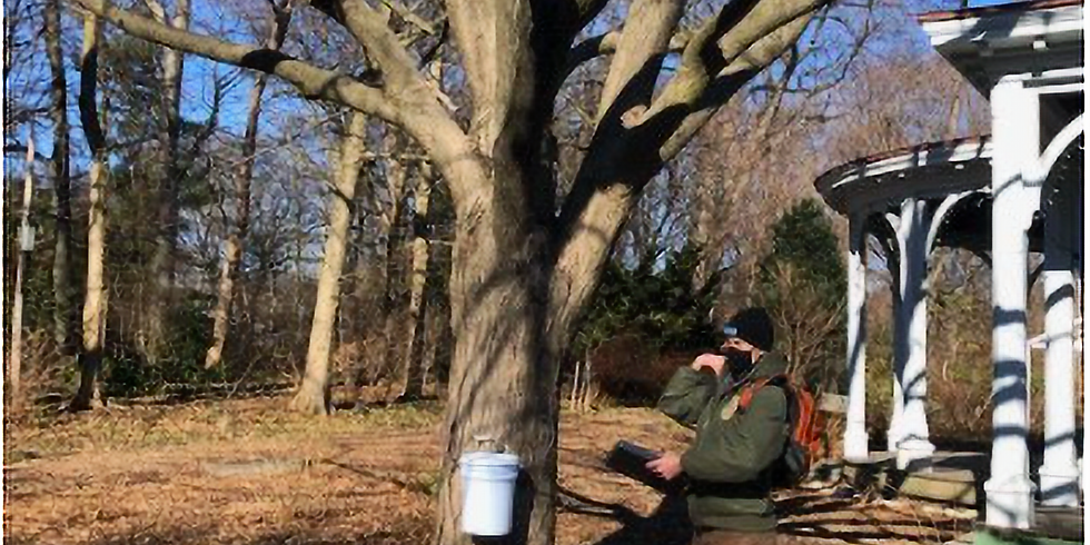 -SOLD OUT-Maple Sugaring at The Farm