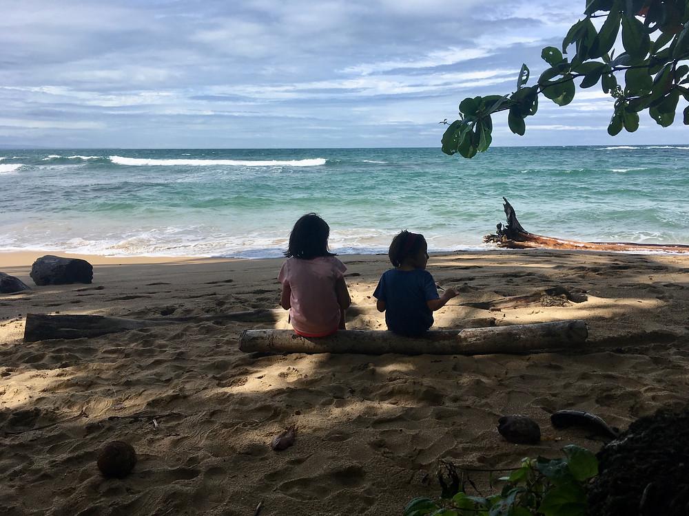 Pic nic sur la plage, le 24 décembre