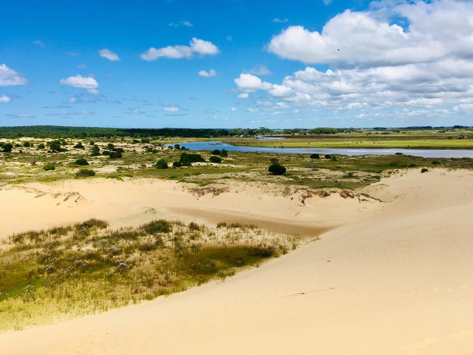 Vue depuis les dunes