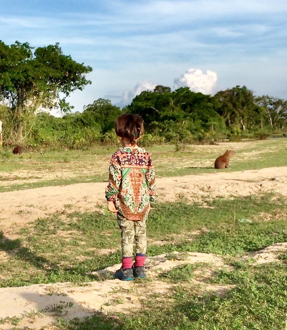 En Amazonie, Emilio est fasciné par les capybaras