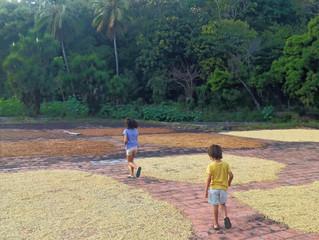 El Salvador et les 4 ans d'Emilio