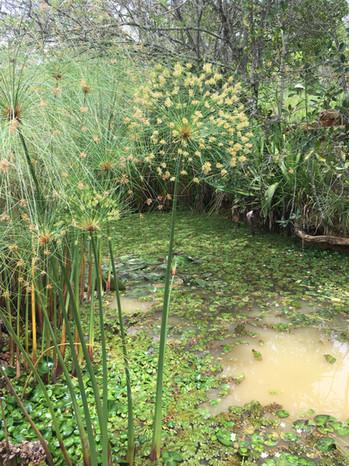 Le bioparc de Barichara
