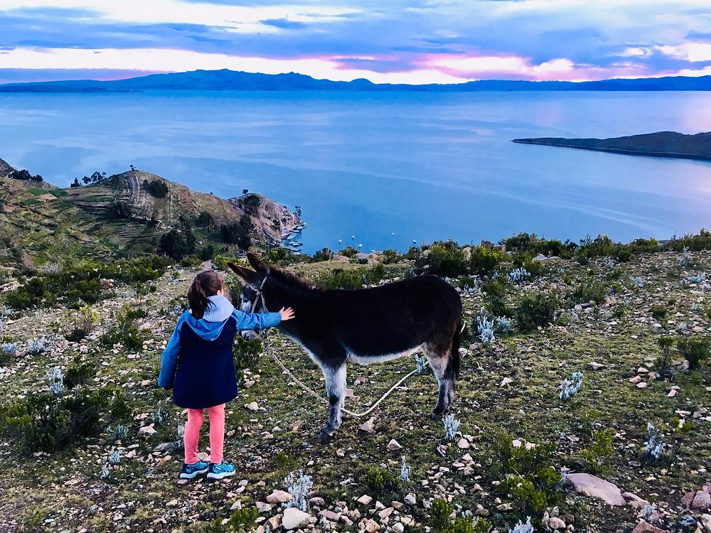 Marilou caresse les ânes et admire la vue