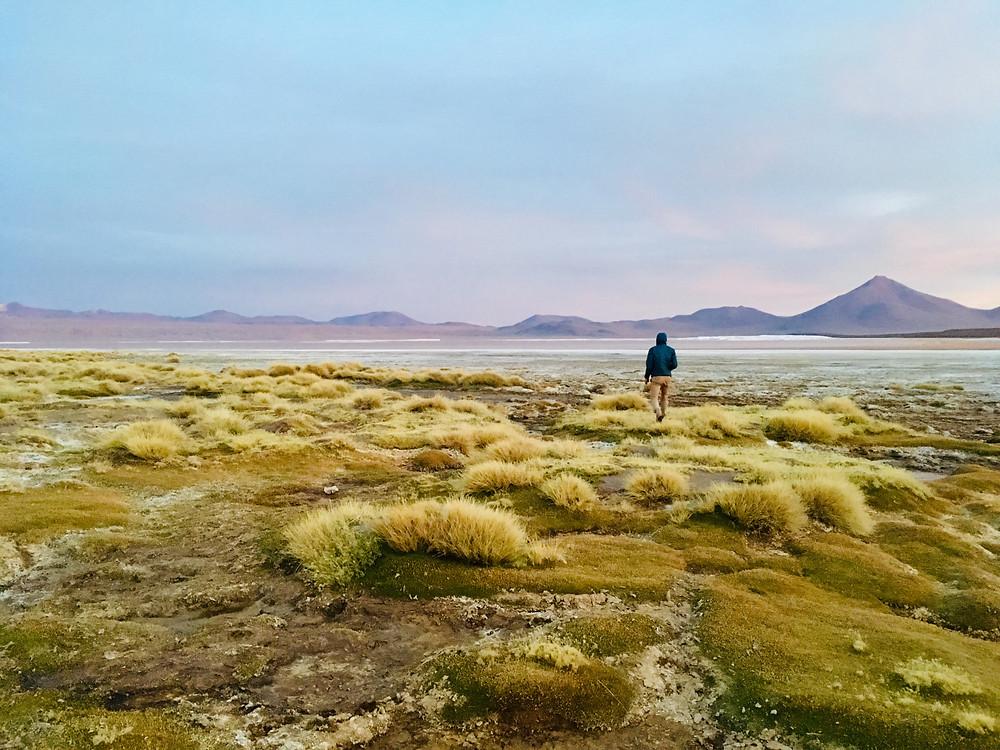 La laguna Colorado nous a époustouflé, photo prise en fin de journée