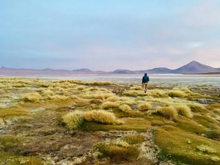 Bolivia hermosa