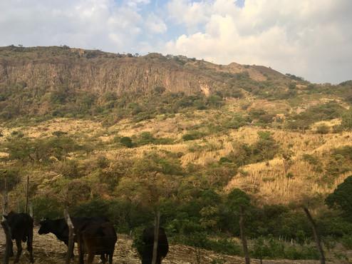 Les payasages du sud du Honduras