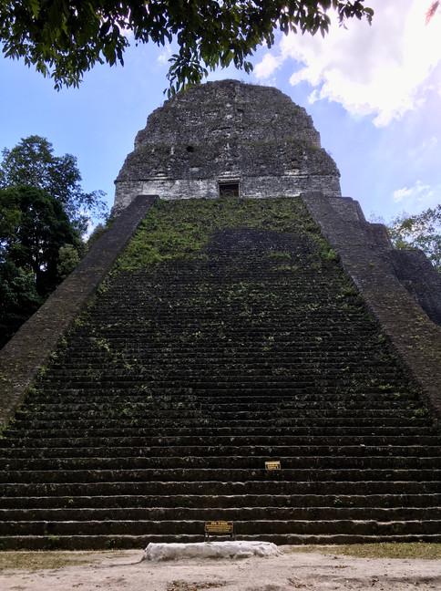 Templo V