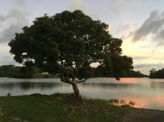 Coucher de soleil sur le Lago Gatun