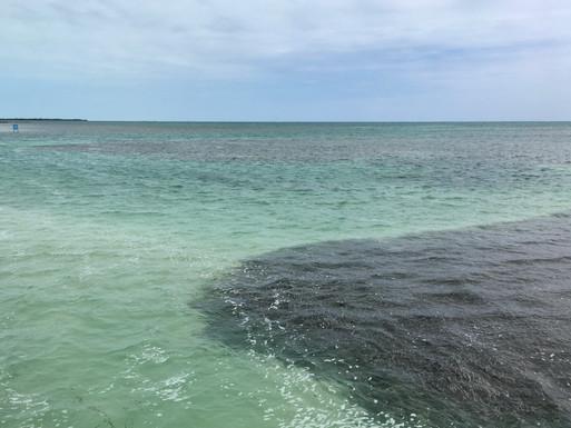 La mer des Caraibes depuis Caye Caulker