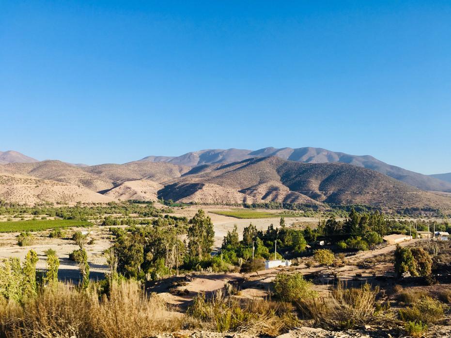 Valle de Elqui, un peu de verdure avant le désert...