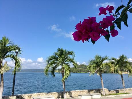 Sur l'Ile de Flores