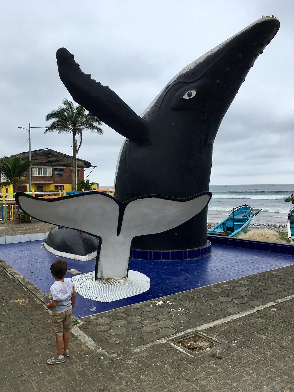 Le paradis des baleines, La Entrada