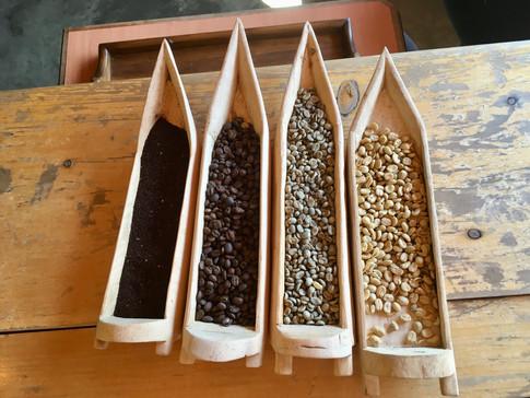 La production du café à San Juan