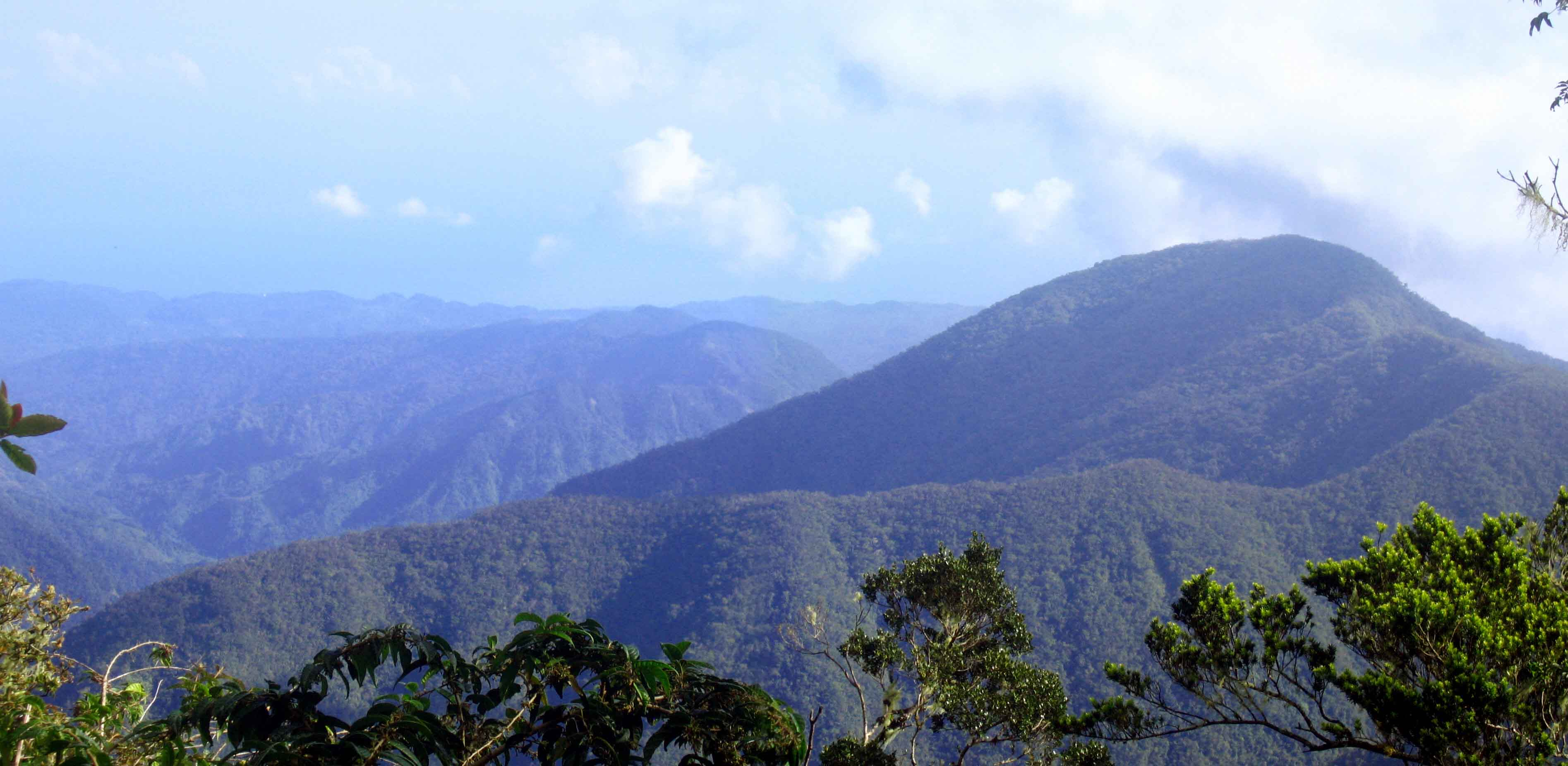 The-Blue-Mountains-Jamaica