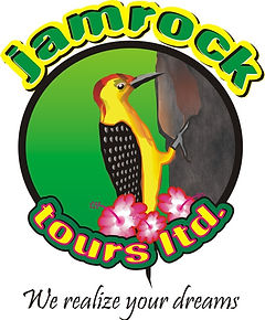 jamrock tour ,hotels,tours,destination management,cruises,vacations
